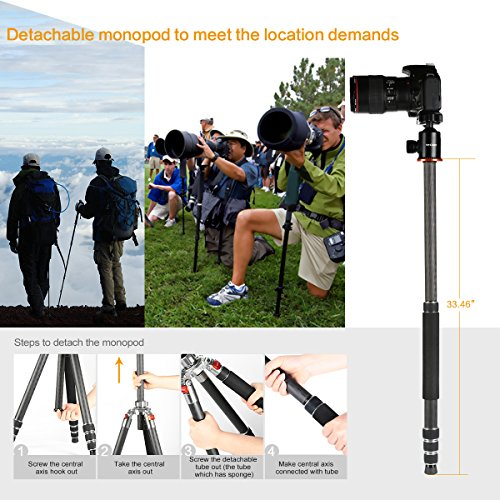 K&f Concept Carbon Fiber Camera Tripod 4 Section 61 Inch with Load Capacity 26.46lbs Monopod for Camera DSLR DV Canon Nikon Sony by K&F Concept (Image #2)