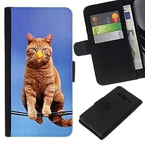 KingStore / Leather Etui en cuir / Samsung Galaxy A3 / Gato Pájaro Sentado Branch Ginge Amarillo Pico