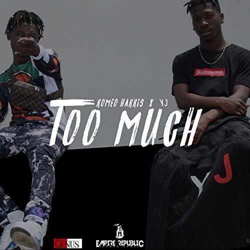 Too Much (feat. YJ)