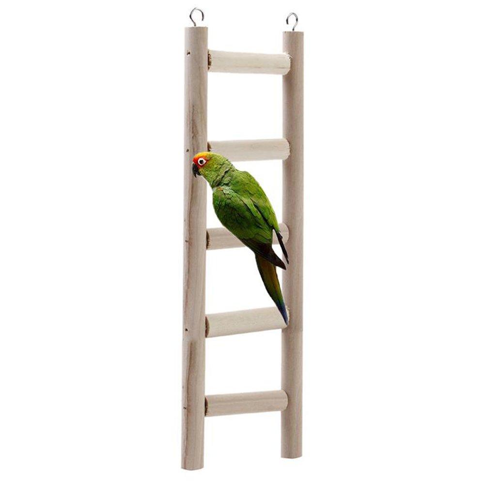 Valorados Opiniones En Para Útiles De Juguetes Mejor Pájarosamp; kiXZPu