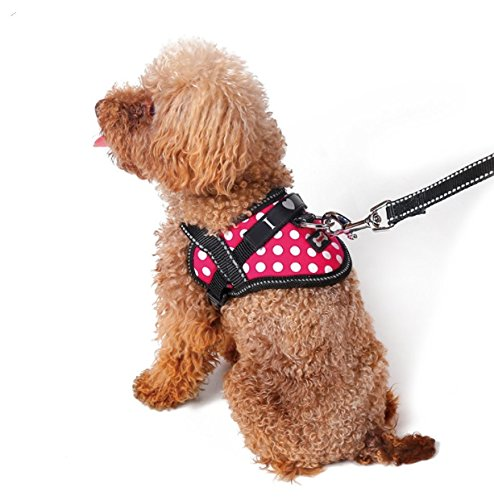 - Emotional Support Animal Harness & Matching Leash Set for Small & Teacup Pet | Emotional Support Animal Patch | Four Colors | Three Sizes: 11