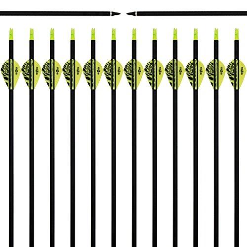 Arrows 2' Blazer Vanes - Best-selling Black Archery 31
