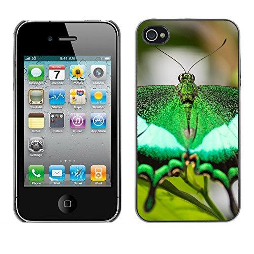 Premio Sottile Slim Cassa Custodia Case Cover Shell // F00026095 Ultragreen machaon // Apple iPhone 4 4S 4G
