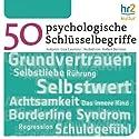 Psychologische Schlüsselbegriffe Hörbuch von Lisa Laurenz Gesprochen von:  div.