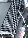 R&G(アールアンドジー) ラジエターガード チタン(カラー) GSX-R1000(17-) RG-RAD0216TI