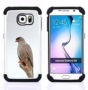 - hawk bird white winter nature grey - - Doble capa caja de la armadura Defender FOR Samsung Galaxy S6 G9200 RetroCandy
