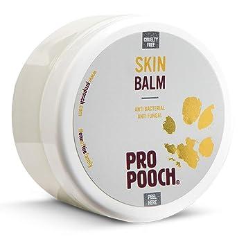 Pro Pooch Perros Bálsamo para Piel con picor (100 ML) | Tratamiento para Perros con Problemas de Piel como Dermatitis, Eczema y Piel Seca: Amazon.es: ...