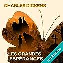 Les grandes espérances | Livre audio Auteur(s) : Charles Dickens Narrateur(s) : Bernard Bollet