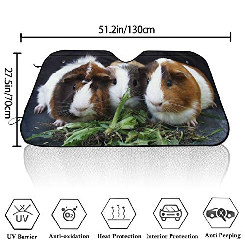Guinea Pig Eating Rabbit Grass Windshield Sun Shade 51x27.5 Inc Foil Sun Shade Fabric for Maximum UV and Sun Protection-Foldable Car Windshield Sunshade Personality Pattern ()