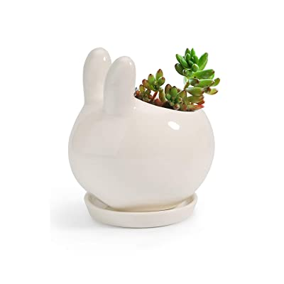 T4U Ceramic Bunny Succulent Pot Cute Animal Planter for Small Plant - White Rabbit Cactus Single Succulent Pot for Miniature Plant Holder with Drainage Hole Home Office Indoor Decoration with Tray: Home & Kitchen