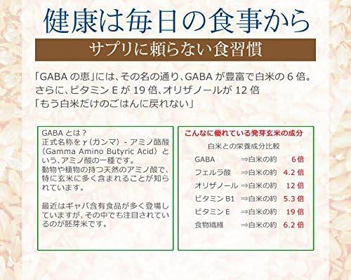 国産 玄米 金のいぶき 2kg (500g×4袋) GABAの恵み 巨大胚芽米