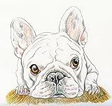 French Bulldog Original Drawing Pet Dog Art-7 x 8 Inches-Carla Smale