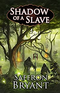 Shadow Of A Slave by Saffron Bryant ebook deal