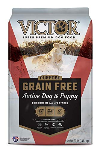 VICTOR Purpose - Grain Free Active Dog & Puppy, Dry Dog Food