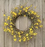 Star Forsythia Wreath Cream Pip Berries Yellow Flowers Country Primitive Floral Décor