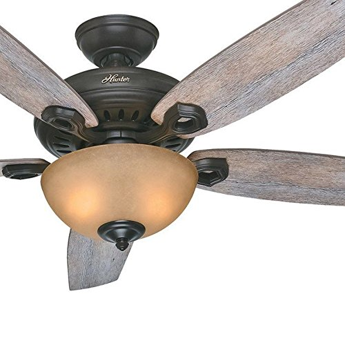 Hunter Fan 60 inch Brittany Bronze Casual with Toffee Glass Light Kit and Barnwood Blades (Certified Refurbished)