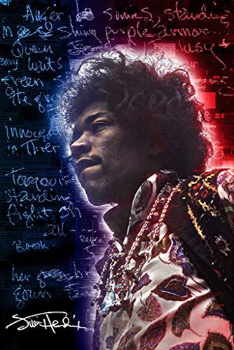 Pyramid America Jimi Hendrix Electric Ladyland Music Poster 24x36 inch