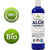 Aloe Vera Hair Growth Aloe Vera Shampoo with Sunflower & Keratin  Natural Hydrating Shampoo for Soft & Shiny Hair  Sulfate Free for Color Treated Hair - Men & Women (8oz)