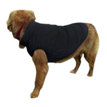HundejackeWarm HundejackeWarm Warmer Warmer Warmer Sportlich Sportlich HundemantelPolyester HundemantelPolyester HundemantelPolyester dCsxBhtQro