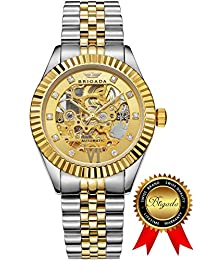 BRIGADA Luxury Gold Automatic Watches for Men, Swiss Brand Nice Hollow Mechanical Men's Watches