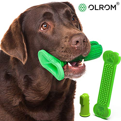 Dog Toothbrush Stick - Non-Toxic Canine Dental Chews for Safe Dog Dental Care - Set of a Large & Small Dog Toothbrush Sticks, Dog Finger Toothbrush, Dog Dental Bone for Effective Dog Teeth Cleaning
