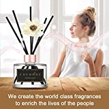 Cocod'or White Flower Reed Diffuser, Lovely Peony