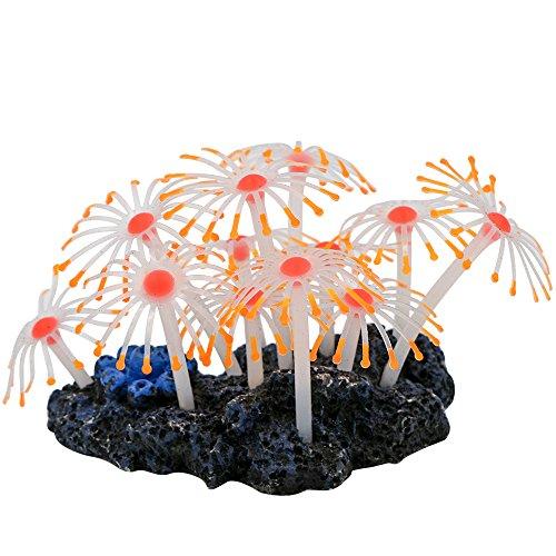 Decorative Coral - 7