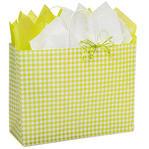 Apple Green Gingham Paper Shopping Bags - Vogue Size - 16 x 6 x 12in. - 200 Pack by NW