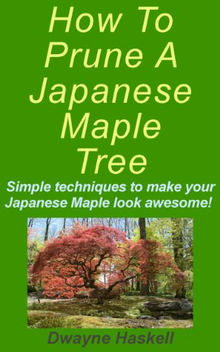 How To Prune A Japanese Maple (Pruning Japanese Maple Trees)