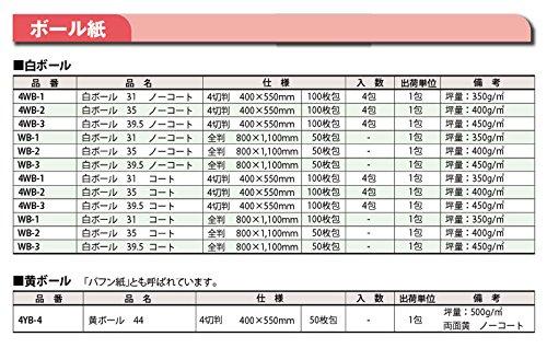 白ボール紙(コート)全判 100枚   B01IR5DMDG