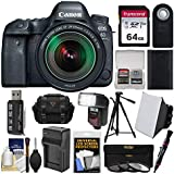 Canon EOS 6D Mark II Wi-Fi Digital SLR Camera & EF 24-105mm is STM Lens with 64GB Card + Case + Flash + Battery & Charger + Tripod + Filters Kit