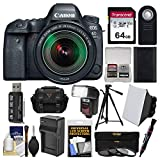 Cheap Canon EOS 6D Mark II Wi-Fi Digital SLR Camera & EF 24-105mm is STM Lens with 64GB Card + Case + Flash + Battery & Charger + Tripod + Filters Kit