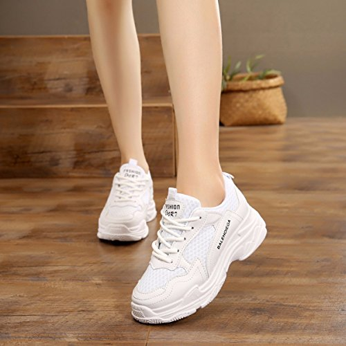 GTVERNH Zapatos de mujer/Verano/Espray/Nuevo Estilo Zapatos de Deporte Joker Mujer Zapatos Espesores Parte inferior Espesor Ocio Estudiantes Zapatos Únicos gris