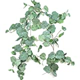 Bird Fiy 5.7Ft Artificial Vines Willow Leaves Greenery Twigs Fake Silk Ivy Garlands Simulation Foliage Rattan Green Leaves Ribbon Vines of indoor/outdoor Wedding Jungle Party Supplies Decor