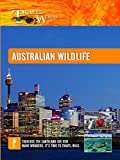 Travel Wild - Australian Wildlife