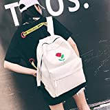 DDLBiz Women Girls Canvas Embroidery Flowers School Bag Travel Backpack Bag (White)