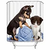KANATSIU Playing Kittens Puppies Shower Curtain 12 Plactic Hooks,100% Made Polyester,Mildew Resistant & Machine Washable,Width x Height is 60x72