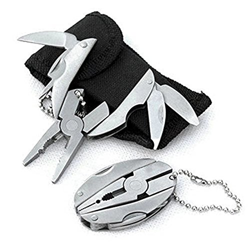 Easyinsmile Mini Portable Multifunction Stainless Steel Folding Pliers Pocket Tool Set Scarab Keychain Pliers Camping Survival Tools for Travel Kits (Regular Version)