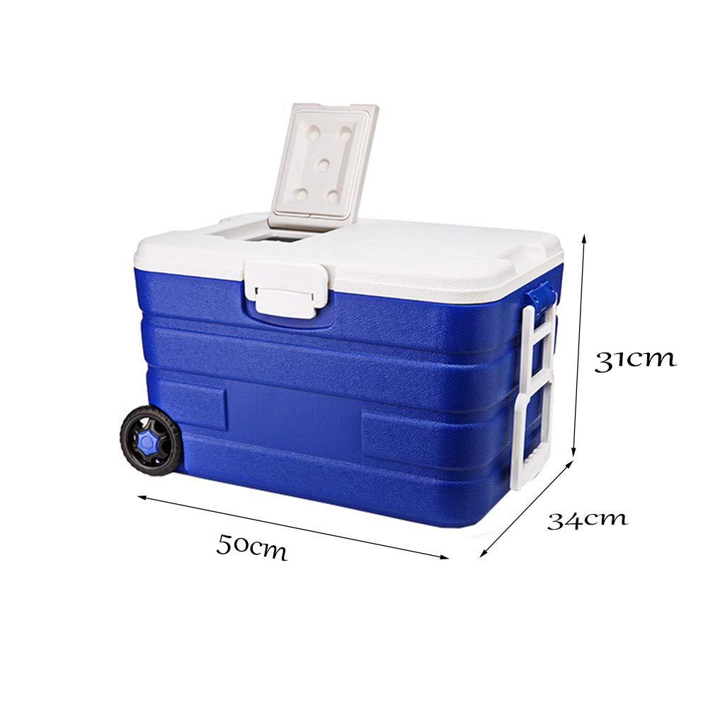 LIYANLCX Refrigerador/congelador portátil con Capacidad para 40 ...