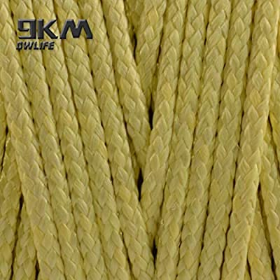 9KM DWLIFE Kevlar Line Kite Flying String High Strength No-Stretch Kevlar Fishing Assist Cord Camping Hiking Survival Rope Outdoor-Braided 150Lbs 1000Ft 1mm Dia