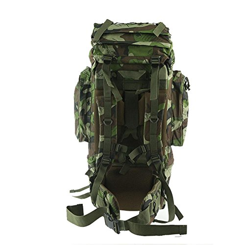 DONG Rucksack / Outdoor / travel / Bergsteigen Tasche , fan color ,