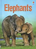 img - for Elephants (Usborne Beginners) book / textbook / text book