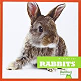Rabbits (My First Pet)