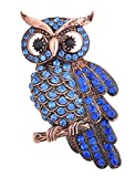 MagicYiMu Antique Bronze Owl Brooch Pin with Colored Rhinestones for Women Men