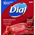 Dial Cranberry and Antioxidant Glycerin Soap, 10 Count from Dial Corporation