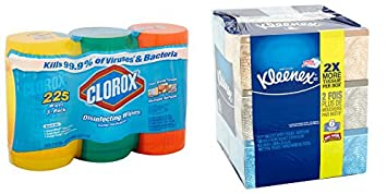 Clorox Disinfecting Wipes Value Pack, Fresh Scent, Citrus Blend and Orange Fusion, 225