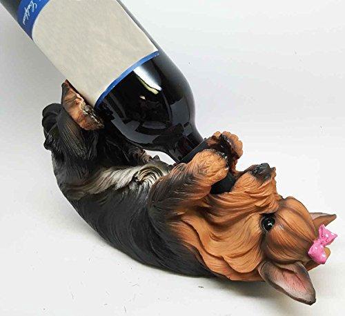 Yorkshire Terrier Yorkie - 2