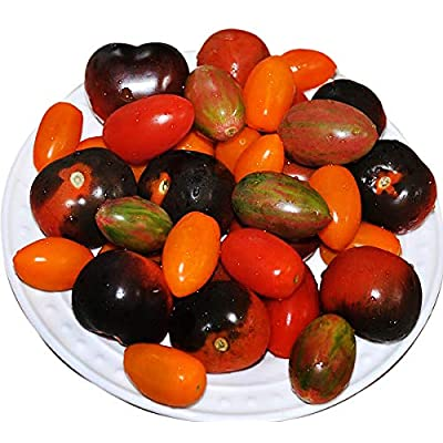 Please Read! This is A Mix!!! 30+ ORGANICALLY Grown Cherry Tomato Mix Seeds 10 Varieties Heirloom Non-GMO, Black, Lucky Tiger, Yellow Red Pear, from USA : Garden & Outdoor