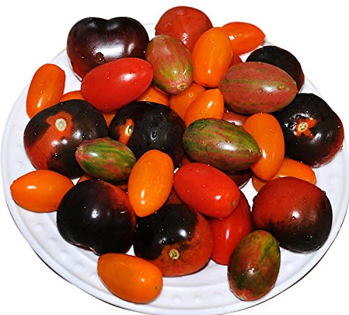 Please Read! This is A Mix!!! 30+ ORGANICALLY Grown Cherry Tomato Mix Seeds 10 Varieties Heirloom Non-GMO, Black, Lucky Tiger, Yellow Red Pear, from USA