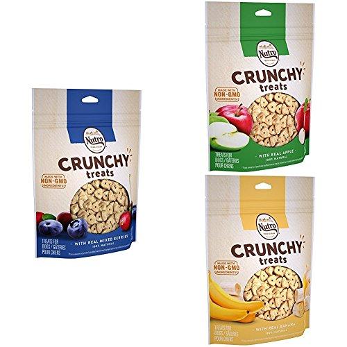 Nutro Crunchy Dog Treats Apple, Banana & Mixed Berry, 16 Oz. Bag (Pack Of 3)